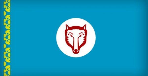 gagavuz bayrağı