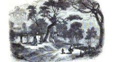 Kırım'da Rus Kolonizasyonu (1783-1850)